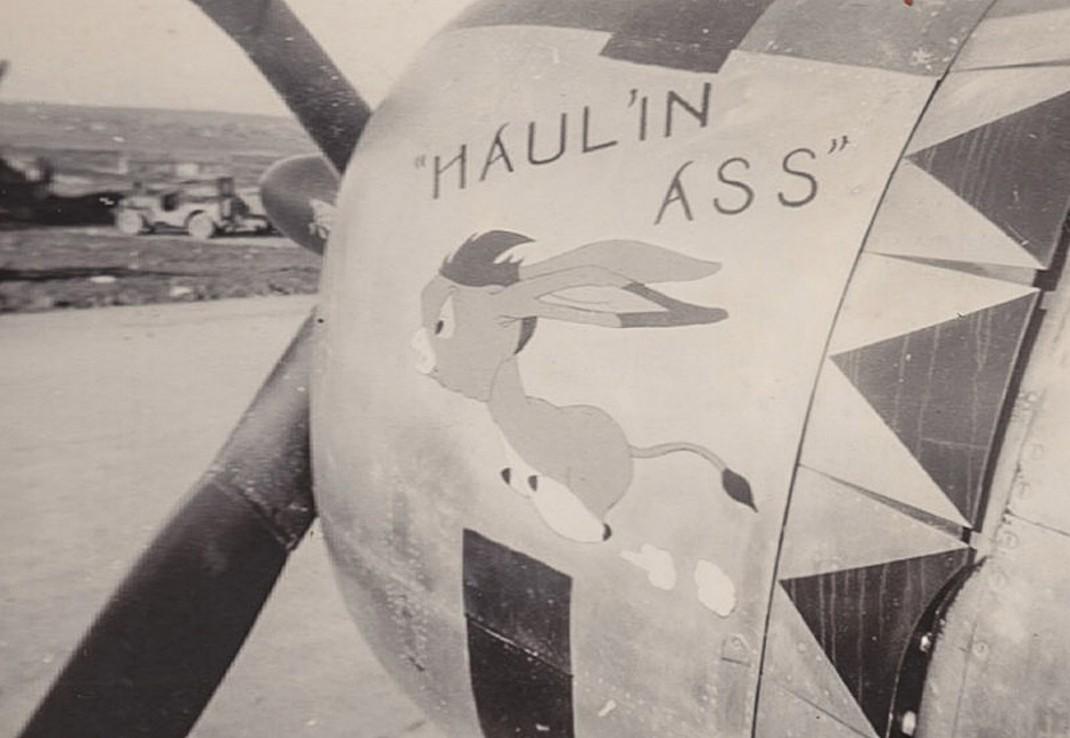 HAULIN ASS